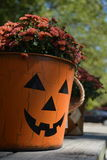 Pumpkin Face Planter with Mums Stock Photo