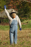 Pumpkin Face Scarecrow. Scarecrow with pumpkin style face waving.  It is wearng a checkered shirt and overalls.  There is a rock and fall foliage in the blurred Royalty Free Stock Photography