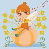 Pumpkin Fairy Royalty Free Stock Images
