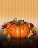 Pumpkin with Fall flowers Royalty Free Stock Image