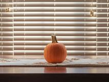 Pumpkin on a fall holidays themed placemat royalty free stock image