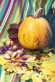 Pumpkin among fall leaf and chestnuts. Pumpkin among the fall leaf and chestnuts on the background of turquoise striped fabric. Toned image. Soft filter Stock Images