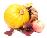 Pumpkin, fall leaves and apple Royalty Free Stock Photography
