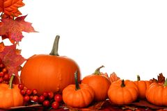 Pumpkin and fall leaves corner border isolated on white Stock Photos