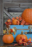 Pumpkin and Fall leaves on country porch Stock Photos