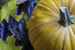Pumpkin Fall Leaves royalty free stock image