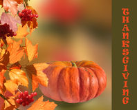 Pumpkin with fall leaves  and red berries Stock Photography