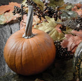 Pumpkin and Fall Leaves on Rustic Wood Royalty Free Stock Photo