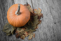Pumpkin and Fall Leaves on Rustic Wood. Background Stock Images