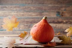 Pumpkin with fall leaves on rustic wooden table. Autumn background for thanksgiving day. Pumpkin with fall leaves on wooden table. Autumn background for royalty free stock photos