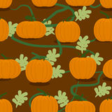 Pumpkin farm seamless patter. Plantation of pumpkins background. Stock Image