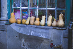 Pumpkin at farmers vegetables market Stock Image