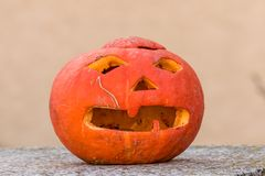 Pumpkin a few days after the holiday helloween Royalty Free Stock Image
