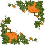 Pumpkin. Flat Design Style. Vector illustration Royalty Free Stock Photo