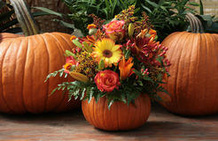 Pumpkin floral Royalty Free Stock Photos