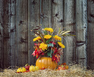 Pumpkin flower arrangement against wood background Stock Photo
