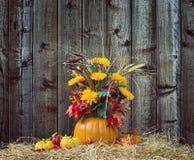 Pumpkin flower arrangement against wood background Stock Photo