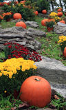 Pumpkin and flowers displayed at a roadside stand Royalty Free Stock Photos