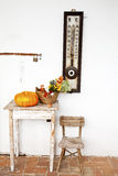 Pumpkin and flowers on old rustic table Royalty Free Stock Images