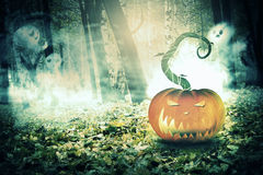 Pumpkin in the Foggy Forest Royalty Free Stock Image
