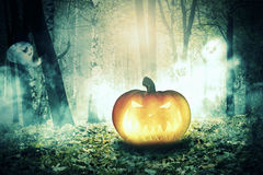 Pumpkin in the Foggy Forest Royalty Free Stock Photos