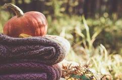 Pumpkin on folded wool jackets Royalty Free Stock Image
