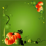 Pumpkin & foliage frame Royalty Free Stock Photos
