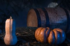 Pumpkin In A Forest At Night stock photo