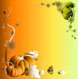 Pumpkin Frame Royalty Free Stock Photos
