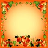 Pumpkin Frame Stock Photo