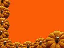 Pumpkin Frame. Background for Halloween or Thanksgiving Royalty Free Stock Photography