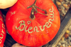 Pumpkin with french sign Bienvenue, top view Royalty Free Stock Photo