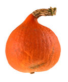 Pumpkin. Fresh pumpkin isolated on white background royalty free stock photography
