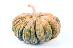 Pumpkin. Fresh pumpkin isolated on white background Royalty Free Stock Images