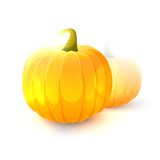 Pumpkin fruits Royalty Free Stock Photo