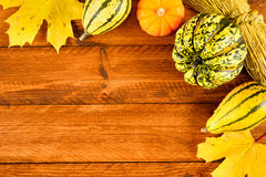 Pumpkin fruits as decoration and background Royalty Free Stock Images