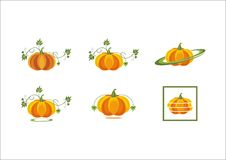 Pumpkin fruits orange pumpkin vegetables leaves fresh halloween harvest plant icon logo. Vector royalty free illustration