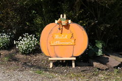A pumpkin Stock Photo