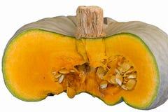 Pumpkin in the garden Stock Photos
