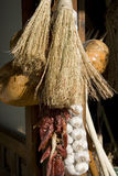 Pumpkin,garlic, chili pepper,and sorghum brooms in Royalty Free Stock Photography