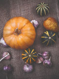 Pumpkin and garlic on cloth from flax, the concept of home-made Stock Photography