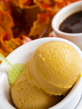 Pumpkin Gelato. Scoop of gourmet pumpkin gelato in white bowl with cup of coffee Stock Photography