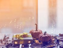 Pumpkin and gifts with maple leaves and Fairy Lights Stock Photo