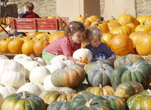 Pumpkin girls Royalty Free Stock Images