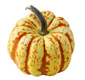Pumpkin Gourd Stock Photo