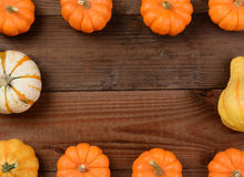 Pumpkin Gourd Frame Royalty Free Stock Image