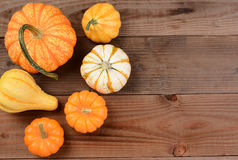 Pumpkin and Gourd Still Life Royalty Free Stock Photo