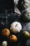 Pumpkin and Gourd Still Life Stock Image