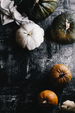 Pumpkin and Gourd Still Life Royalty Free Stock Images