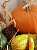Pumpkin, Gourds and Corn in Window Stock Image